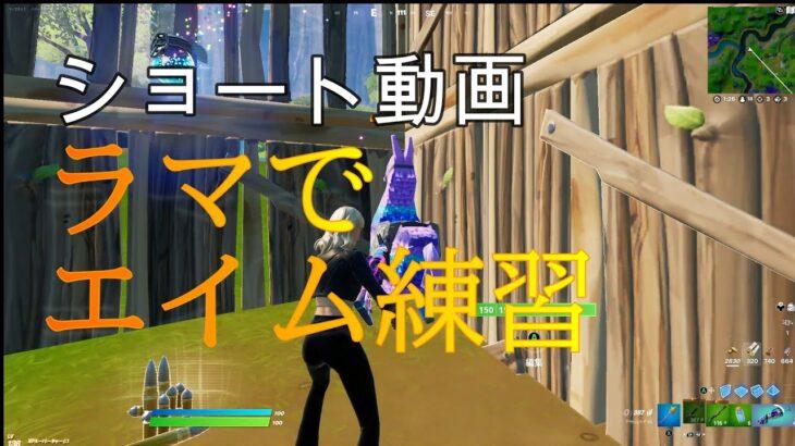 【フォートナイト】#ショート動画 ラマでエイム練習(?)してみた!w